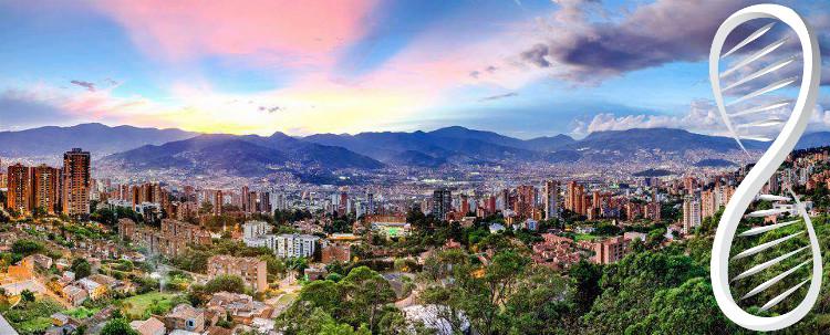 Medellin Lifehacking Sobriety