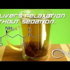 L-Theanine: The Nootropic Ingredient of Green Tea that Delivers Relaxation Without Sedation