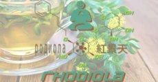 Rhodiola the High Performance Biohacker's Herb