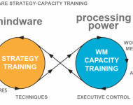 IQMindware-strategy-capacity-training
